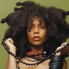 FROM THE NEWS NEST: Erykah Badu avoids jail time and more.