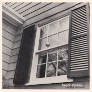 "ALBUM REVIEW: ""What a Pleasure"" by Beach Fossils"