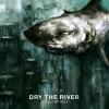ALBUM REVIEW: &#8220;Shallow Bed&#8221; by Dry The River