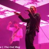 LIVE REVIEW: Bonnaroo 2012, Day 2