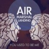 """""""You Used To Be Me"""" by Air Marshal Landing"""