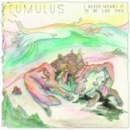 """I Never Meant It To Be Like This"" by Cumulus"