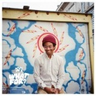 """""""What For?"""" by Toro y Moi"""