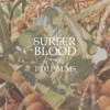 """1000 Palms"" by Surfer Blood"