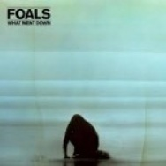"""What Went Down"" by Foals"