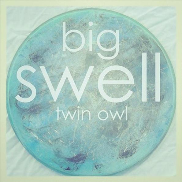 twinowlbigswell