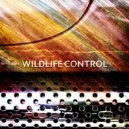 "ALBUM REVIEW: ""Wildlife Control"" by Wildlife Control"