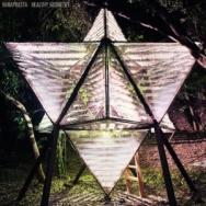 "ALBUM REVIEW: ""Healthy Geometry"" by Vanaprasta"