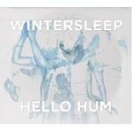 "ALBUM REVIEW: ""Hello Hum"" by Wintersleep"