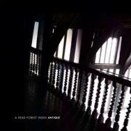 "ALBUM REVIEW: ""Antique"" by A Dead Forest Index"