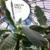 HEAR THIS: Delta Will