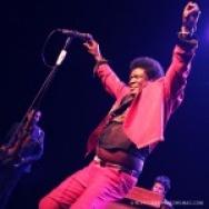 PICTURE THIS: Charles Bradley @ The Fonda Theatre, LA 5/17/14