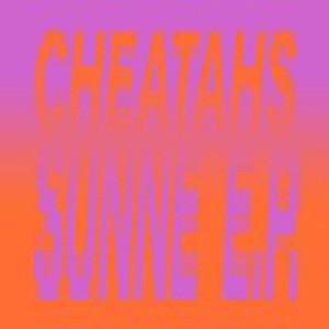 cheatahs