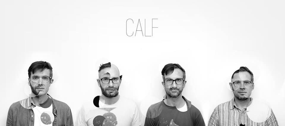 calf1
